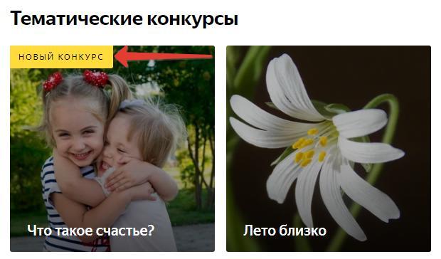 Тематический новый конкурс Яндекс коллекции