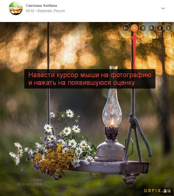 Добавление оценки к фотографии в Одноклассниках