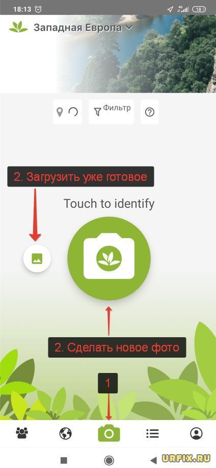 PlantNet загрузить или сделать фото