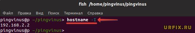Узнать IP-адрес сервера, компьютера Ubuntu
